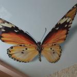 Бабочка потолок